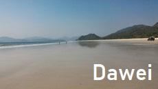Dawei Information