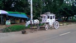 馬車での観光