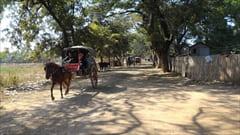 Inn Wa Sagaing