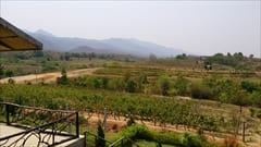 Red Mountain Estate Winery photo